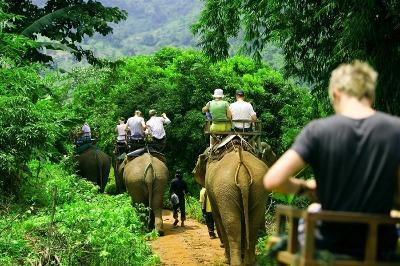 Eco Safari Tour Phuket