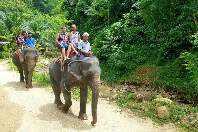kayaking and elephant trekking