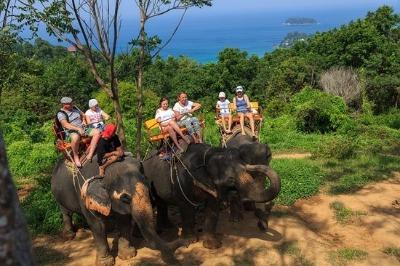 Mini Safari Tour Phuket